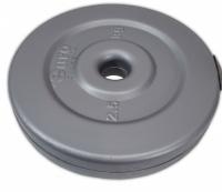 Диск композитный d 25 мм 2,5 кг SS-EK-D25-2054-2,5