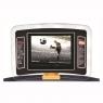 Профессиональная беговая дорожка AeroFit PRO X3-T 7 LCD
