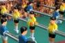 Настольный футбол МВМ Match